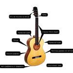 Самоучители для гитары для начинающих